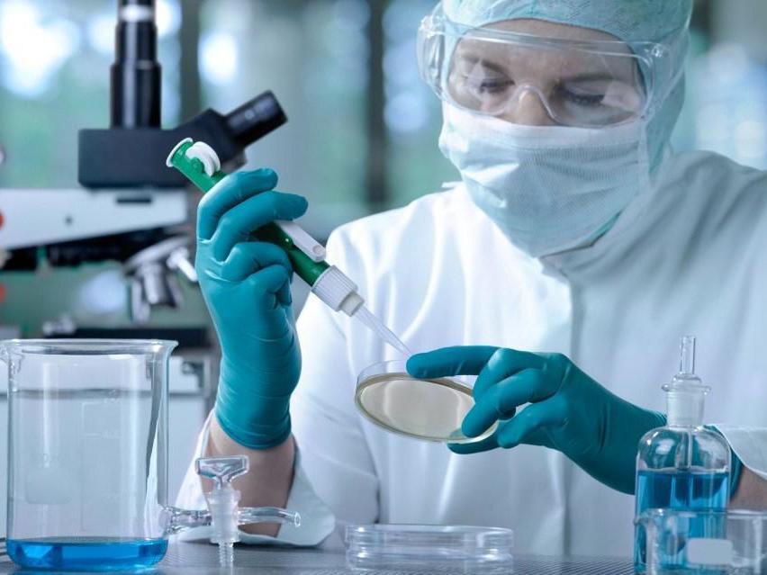 Продукты, которые помогают снизить риск появления рака