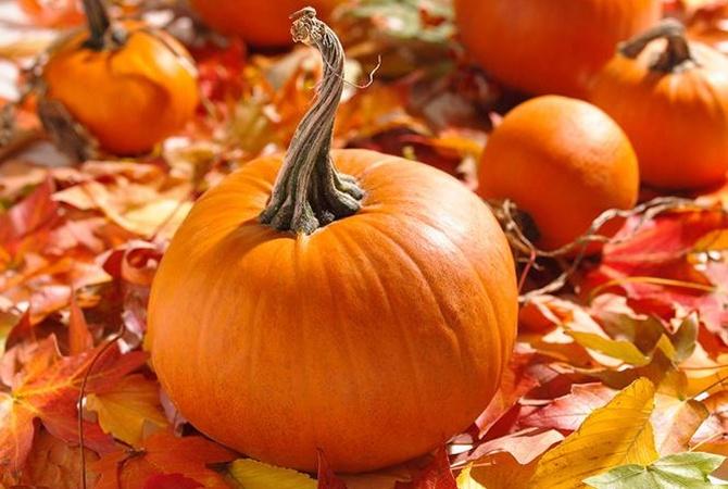 Как контролировать свой весь осенью - совет от диетолога