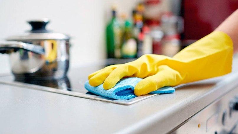 Какие бактерии живут на вашей кухонной губке и чем они опасны