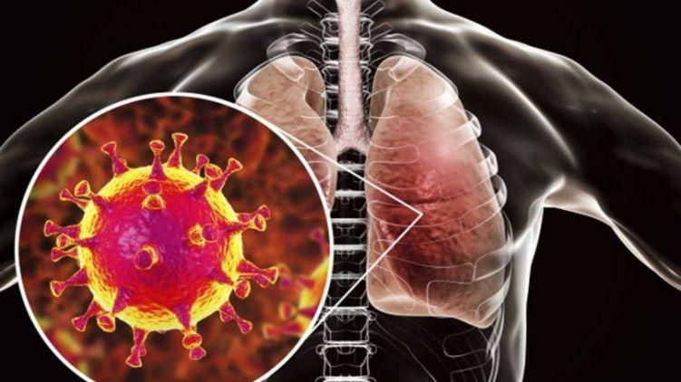В Китае узнали причину появления смертельного вируса, и уже научились его лечить (ВИДЕО)