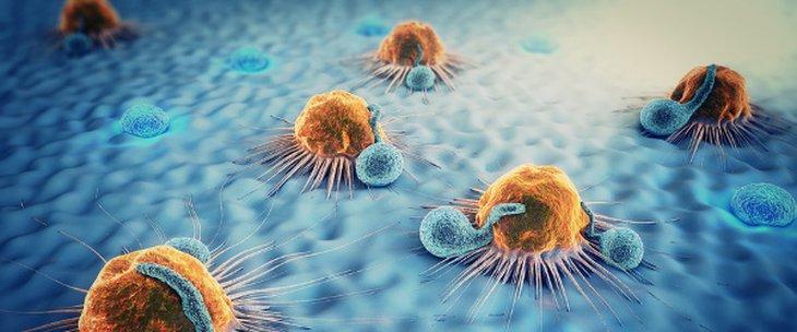 Стал известен продукт, который способен уменьшить риск онкологии