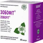 ЗОБОФИТ капсулы по 240 мг №60 (10х6)