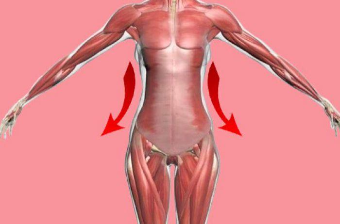 Шесть минут для похудения: действенная гимнастика от военного врача