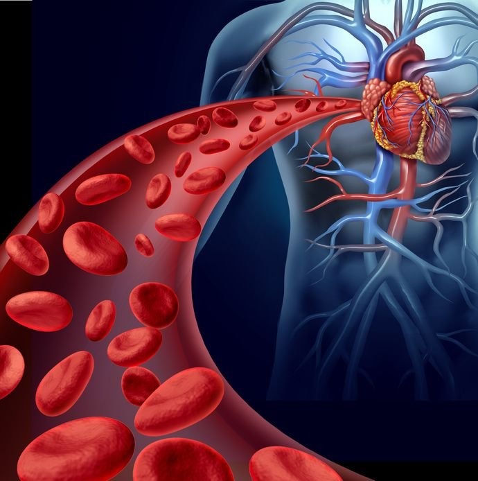 Прямые ингибиторы тромбина