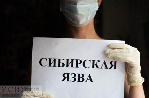 Сибирская язва уже в Украине