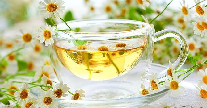 Есть ли польза чая из ромашки