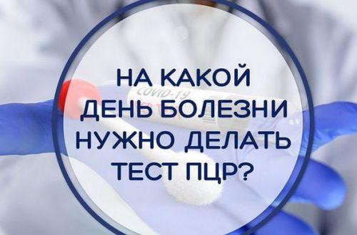 На какой день КОВИДА надо делать ПЦР-тест: объясняет доктор Комаровский