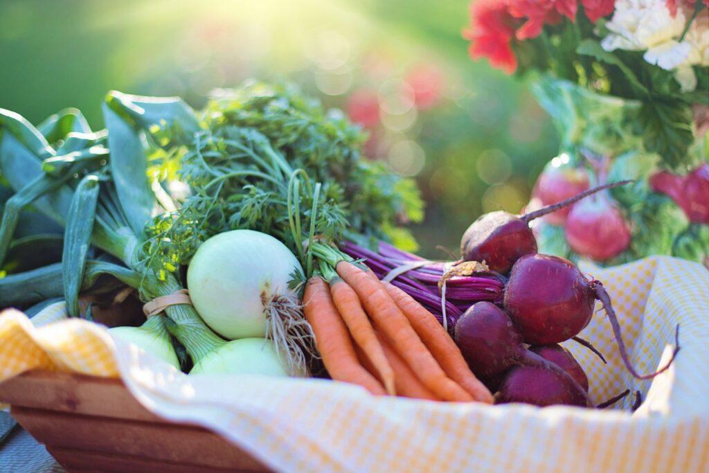 Лечение едой: как питание помогает устоять против COVID-19 и улучшает действие вакцин