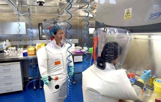 В Китае планировали заразить коронавирусом летучих мышей до пандемии - СМИ