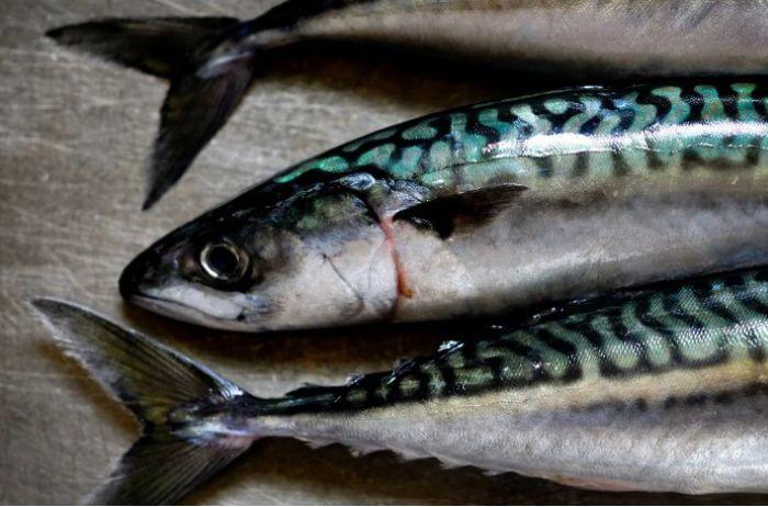 Названы продукты, в которых витамина B12 больше, чем в рыбе
