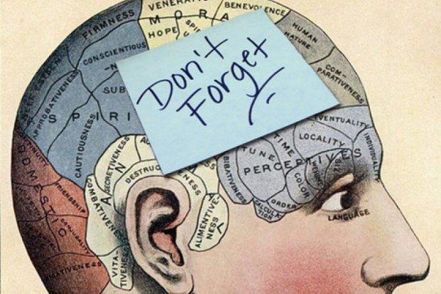 Продукты, которые помогают сохранить память