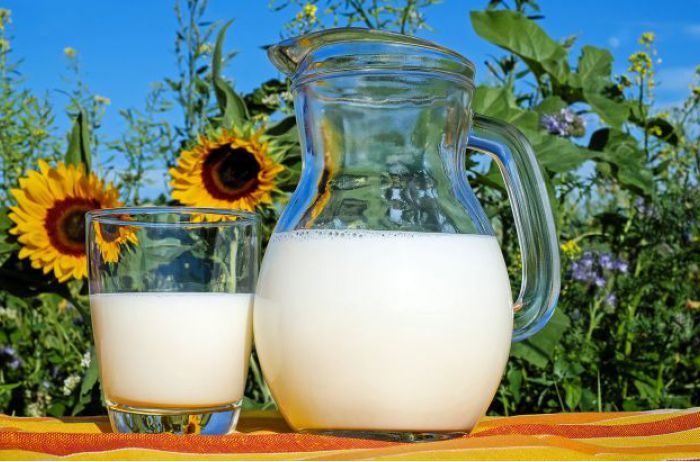 Врачи разрушили миф о самом полезном молоке: не тратьте деньги