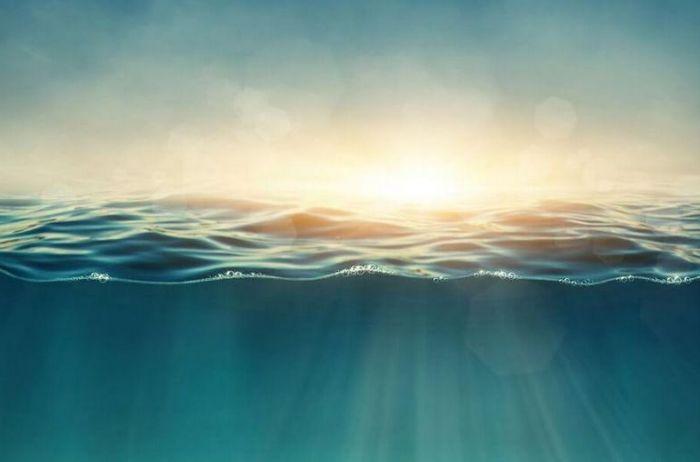Что будет с организмом, если напиться морской воды