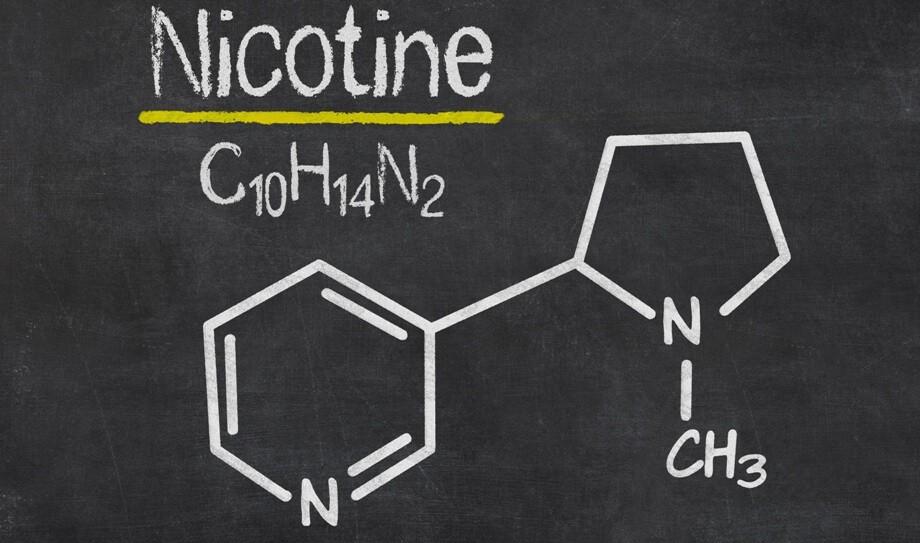 Стало известно, с помощью каких продуктов, просто вывести никотин из организма