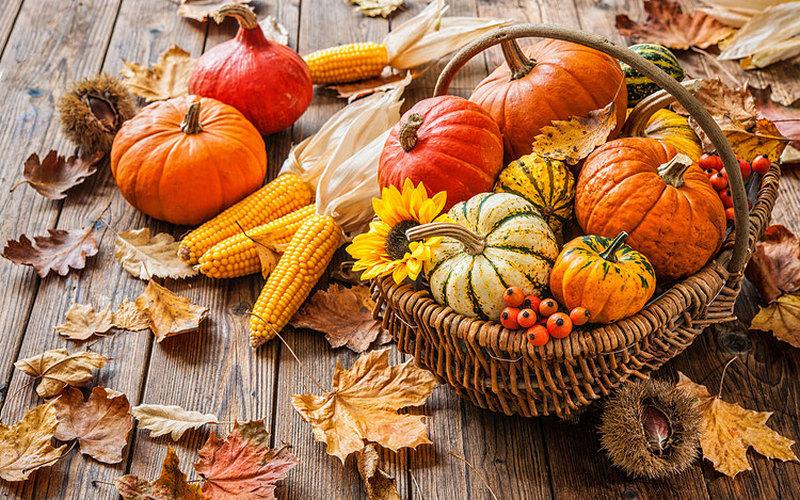 Какие овощи самые полезные осенью