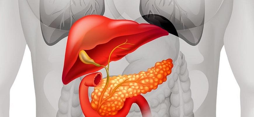 ТОП-9 продуктов для поджелудочной железы