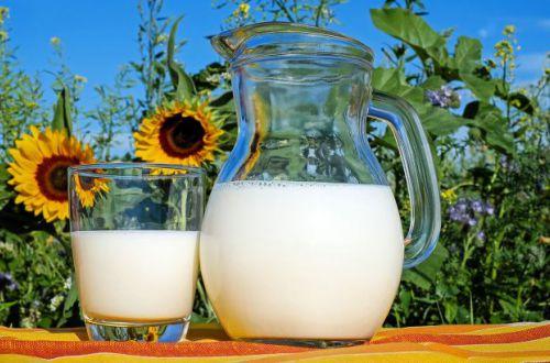 Названы молочные продукты, замедляющие старение