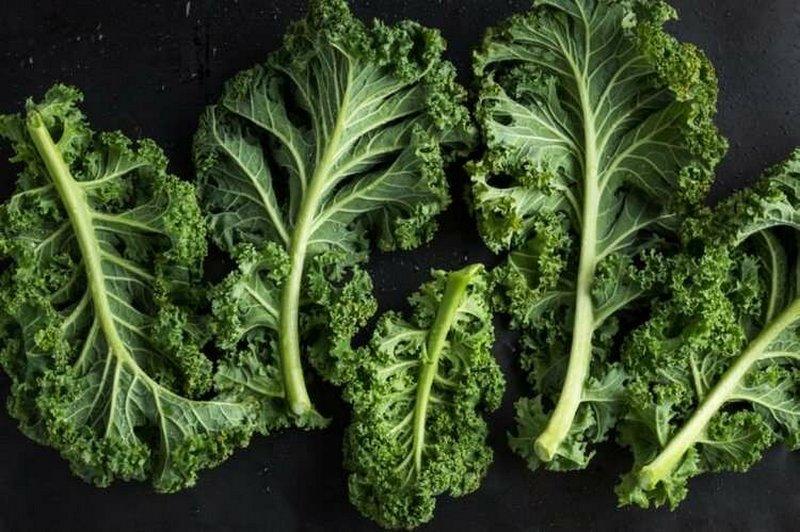 Какие овощи обладают максимальной пользой