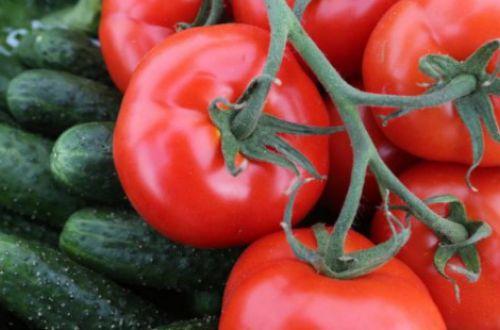 Врачи объяснили, почему нельзя есть одновременно огурцы и помидоры