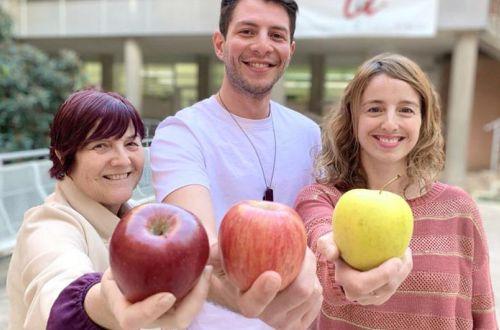 Как яблоки помогают избежать онкологии - ответ диетолога