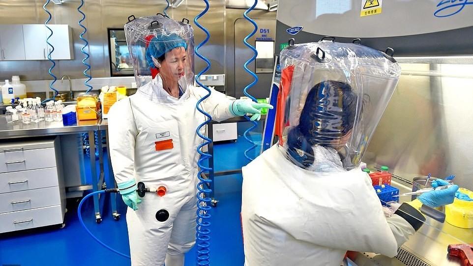 Доказательства лабораторного происхождения коронавируса нашли ученые — СМИ