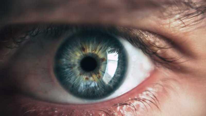 Названы правила лечения ячменя на глазу